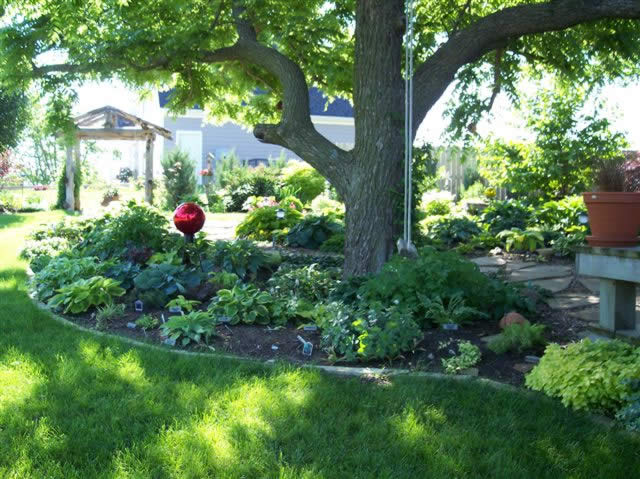 44 flower beds around trees ideas tierra este 86782 for Small trees for flower beds